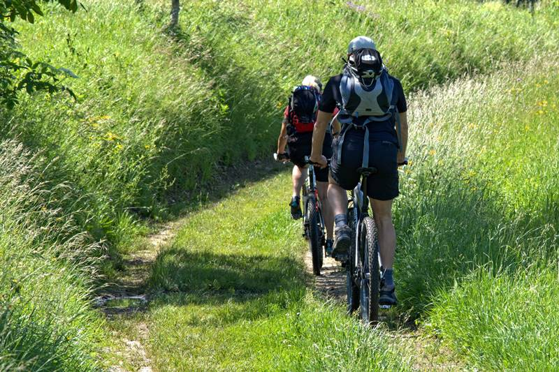 Mountainbiker in Freiamt durch die Wiesen und Weiden